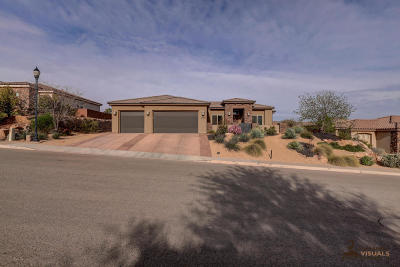 St George Single Family Home For Sale: 2170 S 1340 W