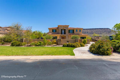 St George Single Family Home For Sale: 557 S Woodsview Cir