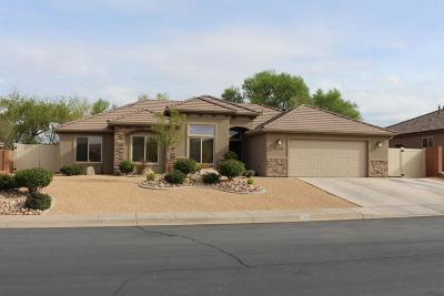 St George Single Family Home For Sale: 1254 W 790 N