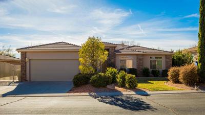 Washington Single Family Home For Sale: 795 W N Links Dr