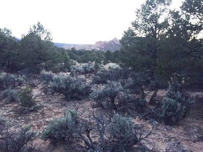Torrey UT Residential Lots & Land For Sale: $39,900
