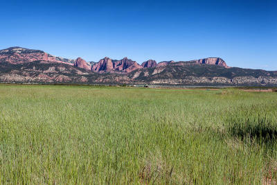 New Harmony UT Residential Lots & Land For Sale: $189,900