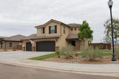 St George UT Single Family Home For Sale: $342,500