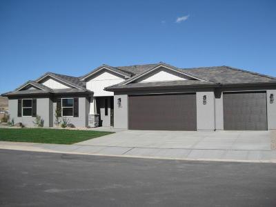 Washington Single Family Home For Sale: 3847 S 460 E