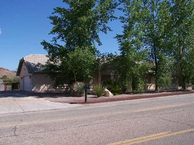 St George Single Family Home For Sale: 430 W Man O War