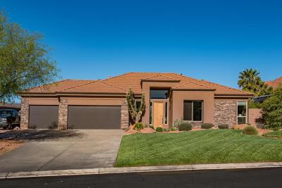 Single Family Home For Sale: 223 N Painted Hills Dr