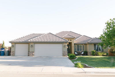 Washington Single Family Home For Sale: 658 E Lost Ridge Dr