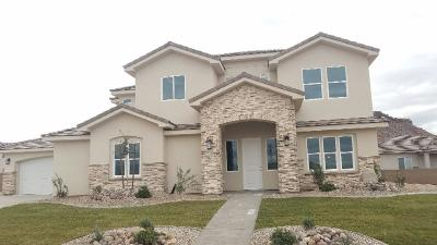 St George Single Family Home For Sale: 3216 E Holly Dr
