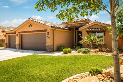 St George Single Family Home For Sale: 803 W 4100