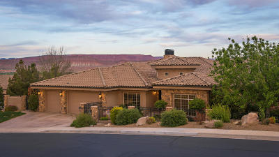 St George Single Family Home For Sale: 1611 View Point Dr