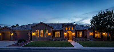 Washington County Single Family Home For Sale: 1346 S 2670 E