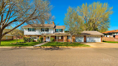 St George Single Family Home For Sale: 1260 Baneberry Dr