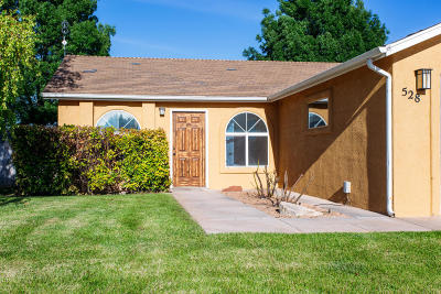 St George Single Family Home For Sale: 528 N 2230 E