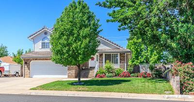 Santa Clara Single Family Home For Sale: 1738 Snow Canyon Dr