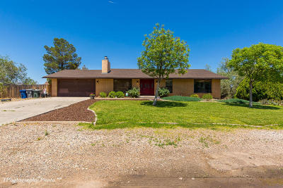 St George Single Family Home For Sale: 1521 Tamarisk Dr