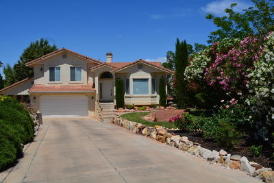 St George Single Family Home For Sale: 2010 Twin Cir