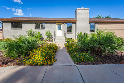 St George UT Single Family Home For Sale: $359,900