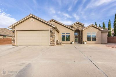 St George Single Family Home For Sale: 1775 N Lava Flow Dr