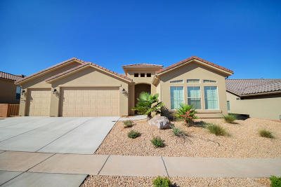 St George UT Single Family Home For Sale: $379,900