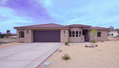 St George Single Family Home For Sale: 2985 Blueberry
