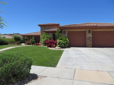 Washington UT Single Family Home For Sale: $539,000