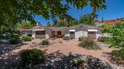 St George Single Family Home For Sale: 288 Diagonal St