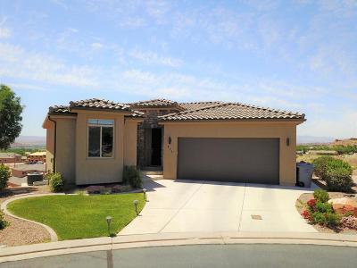 Washington Single Family Home For Sale: 475 W Omni Ln