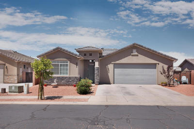 Hurricane Single Family Home For Sale: 323 N 725 W