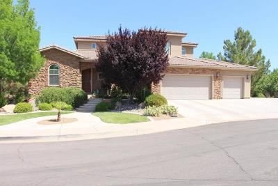Washington Single Family Home For Sale: 744 W 1545 N Cir