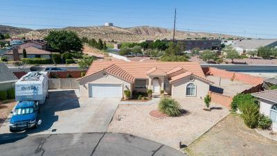 St George Single Family Home For Sale: 3130 S Walnut Cir