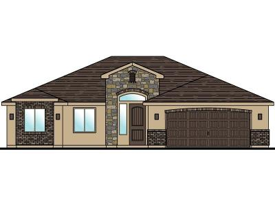 St George Single Family Home For Sale: Lot 11 3230 South St