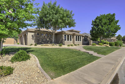 St George Single Family Home For Sale: 1894 S 2740 E
