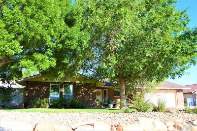 St George Single Family Home For Sale: 2125 S Cameron Place