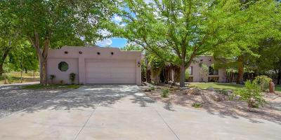Hurricane Single Family Home For Sale: 639 S 80 W