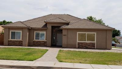 St George Single Family Home For Sale: 1601 W 1270 N