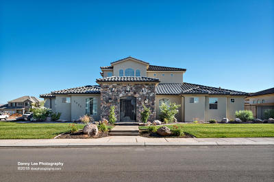 St George Single Family Home For Sale: 2255 E Pasture Dr