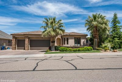 St George Single Family Home For Sale: 1745 Flagstone Rd