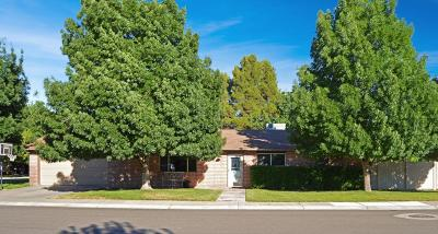St George Single Family Home For Sale: 453 S Green Valley Ln