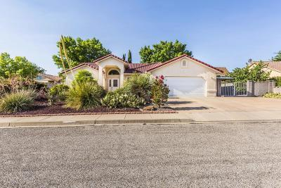 Santa Clara Single Family Home For Sale: 3115 Dutchman Dr