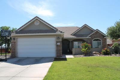 Washington Single Family Home For Sale: 2578 S 400 W