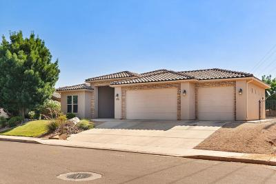 Washington Single Family Home For Sale: 1971 Great Basin Dr
