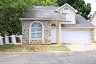 St George Single Family Home For Sale: 1040 N 1300 W #5