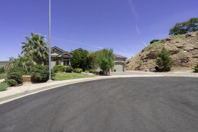 Washington Single Family Home For Sale: 730 S Apache Cir