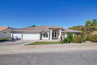 St George Single Family Home For Sale: 1655 Redstone Way
