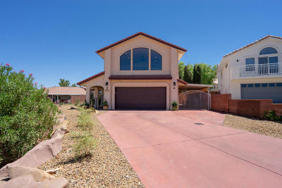 St George Single Family Home For Sale: 2243 Foothill Cir