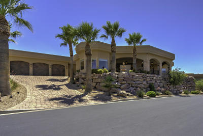 St George Single Family Home For Sale: 1930 View Point Dr