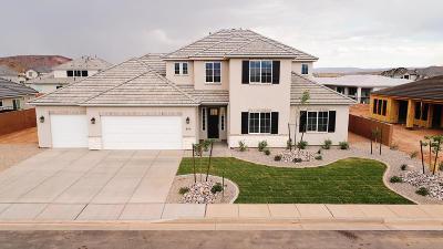 Washington Single Family Home For Sale: 980 E Iron Horse Dr