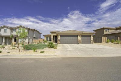Washington Single Family Home For Sale: 381 N Sage Crest Dr