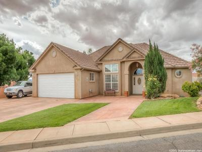 St George Single Family Home For Sale: 2162 E 50 S Cir