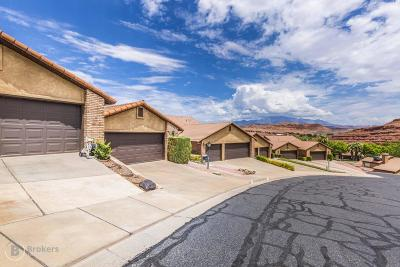 St George Single Family Home For Sale: 607 Ridgecrest Cir
